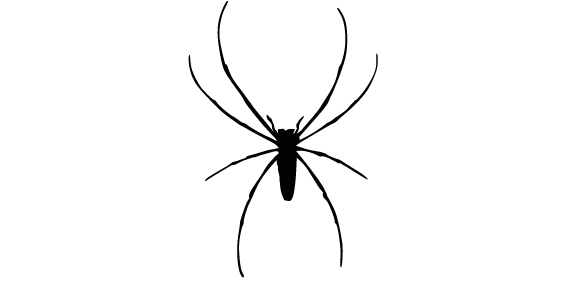 A à Z Extermination exterminateur araignées