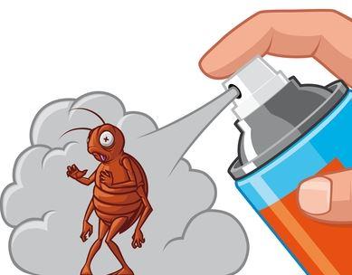 A à Z Extermination exterminateur insecticide
