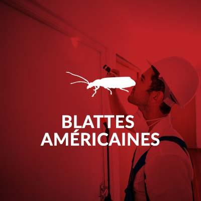 Groupe AZ extermination exterminateur insectes