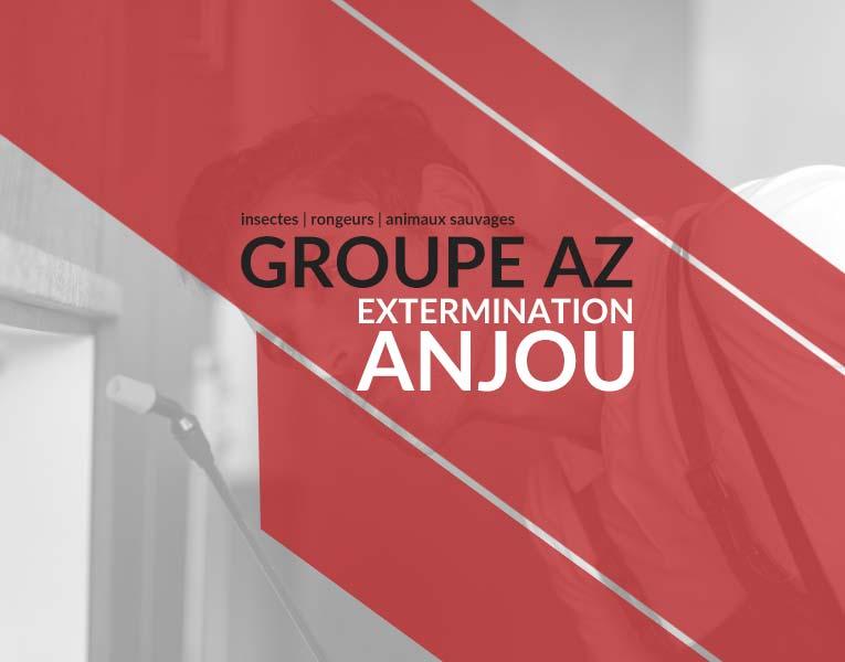 Exterminateurs Anjou