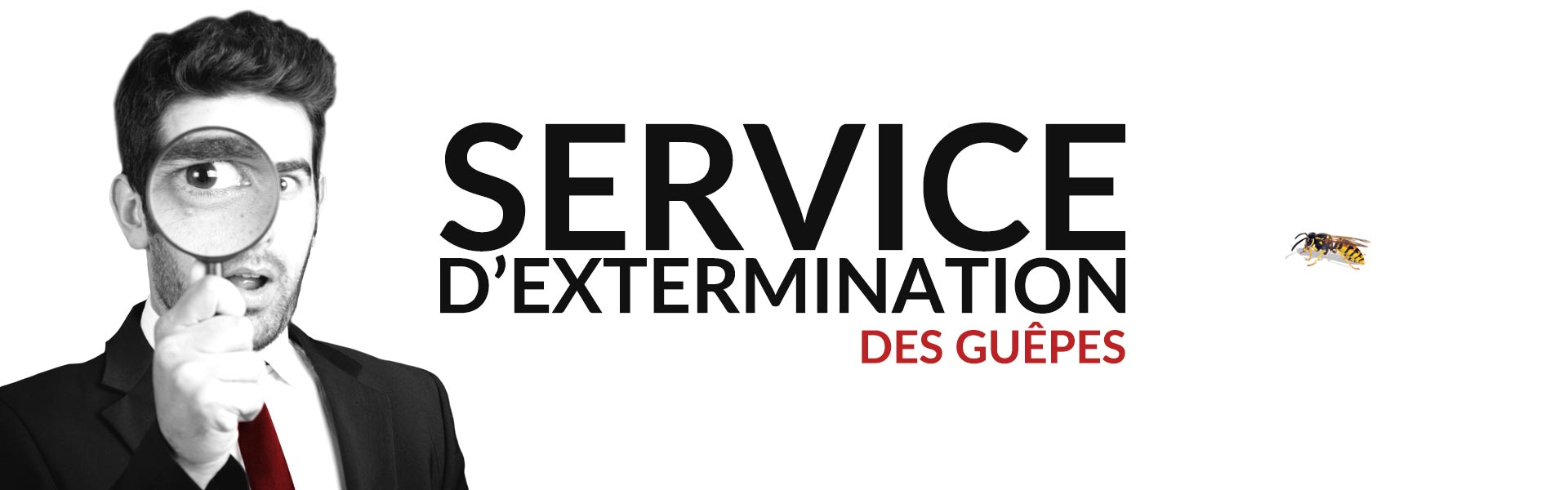 Groupe AZ Extermination exterminateur guêpes